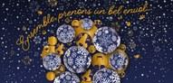 Belle et merveilleuse année à tous !